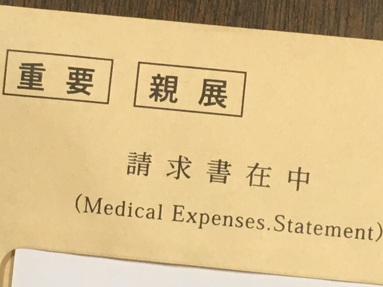 MedicalExpensesStatement